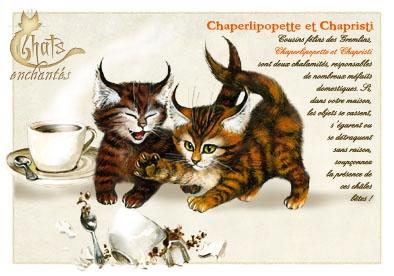Image du jour / et belles images . Carte_severine_pineaux_avril_-_chat_chaperlipopette_et_chapristi_-_cpk022_prd