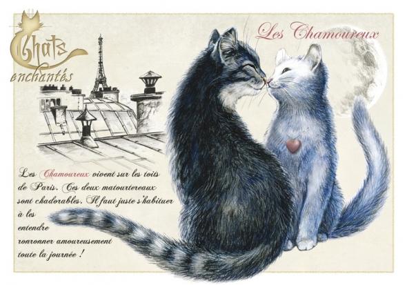 Image du jour / et belles images . Carte_severine_pineaux_chats_enchantes_cpk034_prd