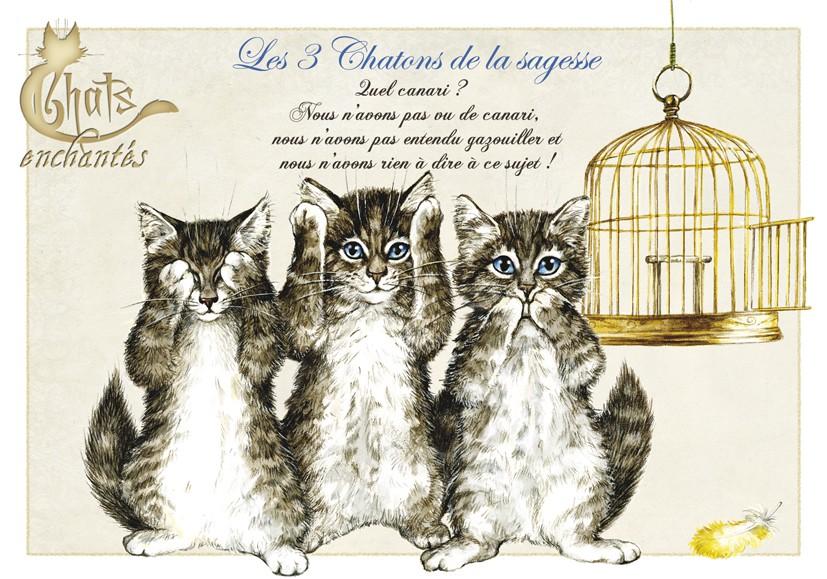 carte postale chat les 3 chatons de la sagesse. Black Bedroom Furniture Sets. Home Design Ideas