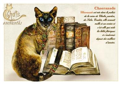 Image du jour / et belles images . Carte_severine_pineaux_janvier_-_chat_chaerazade_-_cpk019_prd