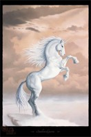 Poster Licorne Posters F�eriques