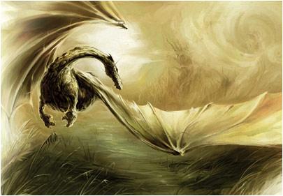 tourbiere dans dragon